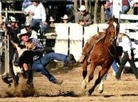 Who is throwing who, Mareeba Rodeo