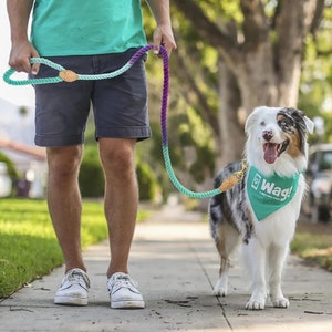 Queenie's Pawprints Eco-friendly Cotton Rope Dog Lead - Blue Lagoon