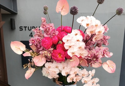 WINTER FLORAL TRENDS