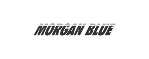 City Cycling Morgan Blue