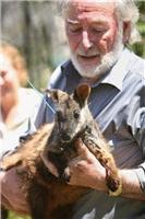 Brush-tailed Rock-wallaby return to Grampians wild critical step in species recovery