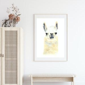 Wonder the Llama - Archival Print A4