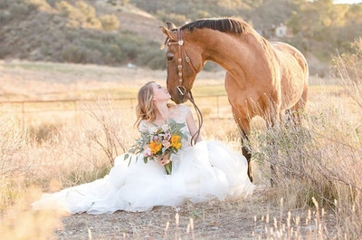 The Most Important Thing To Do With Your Horse Before A Photoshoot