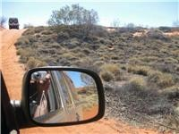 Canning Stock Route dunes coming  and going