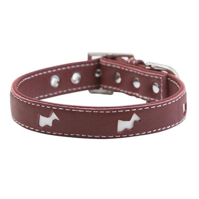 Hamish McBeth Red Hamish Dog Collar