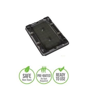 BAINBRIDGE Rodent Glue Traps & Glue Boards Small: Mouse Glue Trap 4 pack