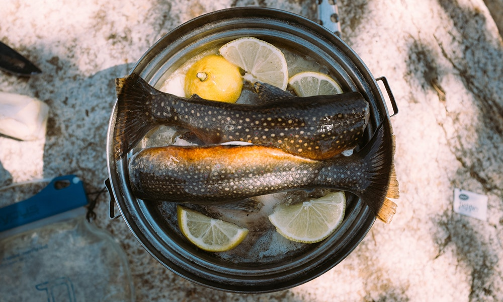 cooking-fish-over-campfire-3-jpg
