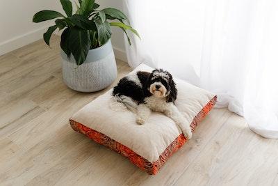 Mariska Natural Velvet Pet Cushion Medium Size $167.00