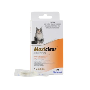 Moxiclear For Cats More Than 4kg Orange