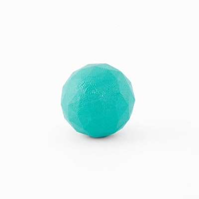 Zippy Paws Waggle Ball