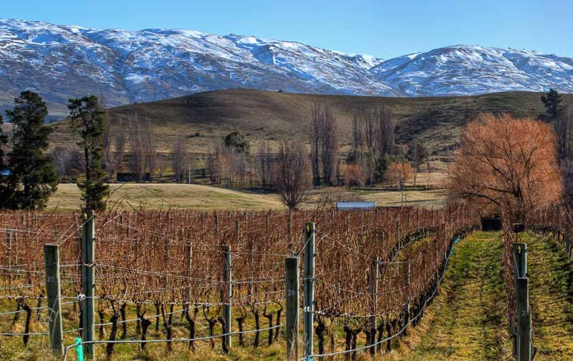 Central Otago wine region