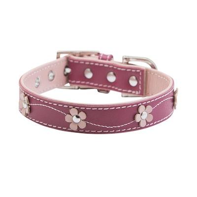 Hamish McBeth Lucy Pink Dog Collar