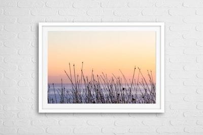 """""""Summer Haze LS"""" Photography Print"""