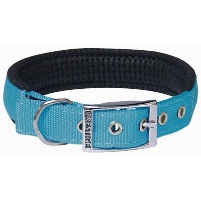 Prestige Pet Products Prestige Pet Soft Padded Adjustable Dog Collar Turquoise 1 Inch - 6 Sizes