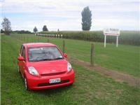 Sirion takes five beside a  maize  plantation near Matamata