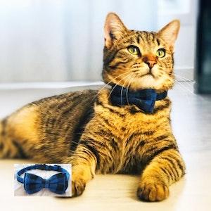 Queenie's Pawprints Kitty Bowtie Cotton Plaid Collar in Blue