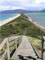 Looking down  The Neck Bruny Island  near Truganini memorial