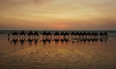 Best of Broome: 11 incredible things to see and do