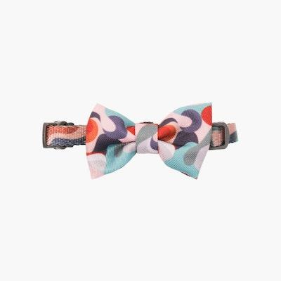 Pidan® Bow Tie Collar – Cat -A2