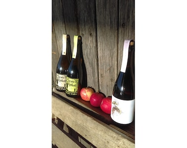 Mixed Pack of Sparkling Cider - 6 pack