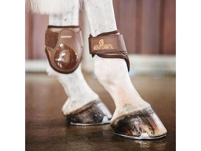 Kentucky Young Horse Fetlock Boot