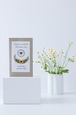 Global Sisters Shop The Backyard Garden Enthusiast - 'Grow Your Own' Sunflower Seeds