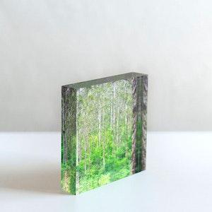 ALOFT - Acrylic Desk Block
