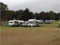 Unpowered campsites Merimbula Lake Holiday Park.