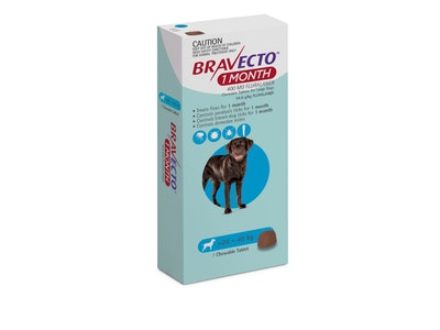 Bravecto 1 Month Large Dog 20-40kg Blue 1 Pack