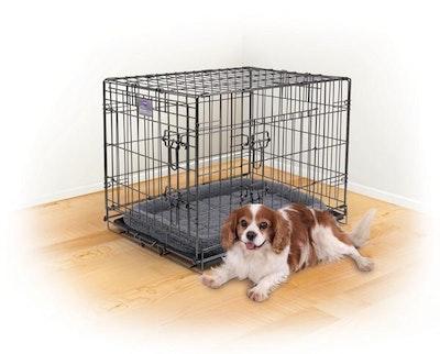 Kazoo Premium Mobile Dog Crate