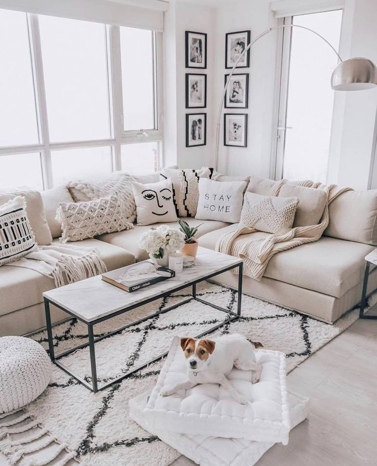 Best Couches to Buy for Your Home