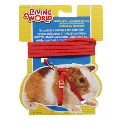 Living World Guinea Pig Harness & Lead Set