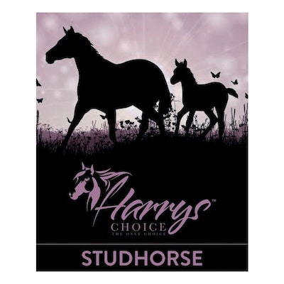 HARRYS CHOICE Stud Horse Nutritional Feed Supplement 18kg