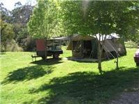 Our tent and trailer at Porepunkah Pines