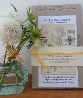 Backyard Garden Enthusiast Pollinator Friendly Gift Pack