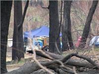 Caring Rotorua community welcomes Australian bush fire victims