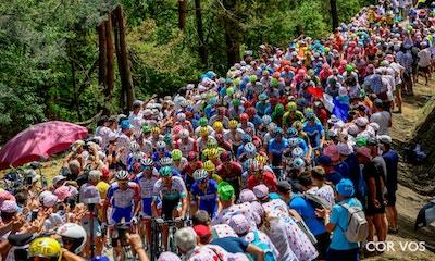 Tour de France 2019: Stage Nine Race Report