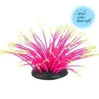 Warragul Pet Emporium Sea Anemone Silicone Pink/Yellow S