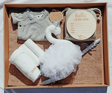 On Chic Baby Clothes Swan Lake Baby Gift