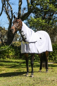 Diamond Deluxe Horsewear Deluxe Flagcloth Combo Rug