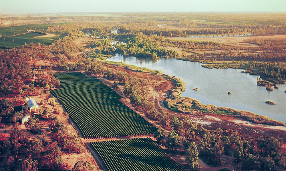 cellarspace-riverland-image5-png