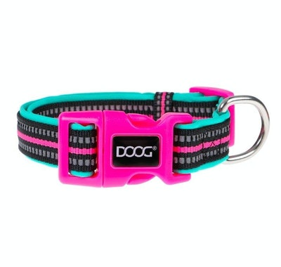 Doog Neoprene Collar Rin Tin Tin Neon