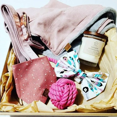 Lux Blush Pink Puppy Gift Box - Polly Pawz | Daniel's Pet Emporium
