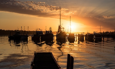 Lakes Entrance Local Fishing Advice: Offshore Fishing