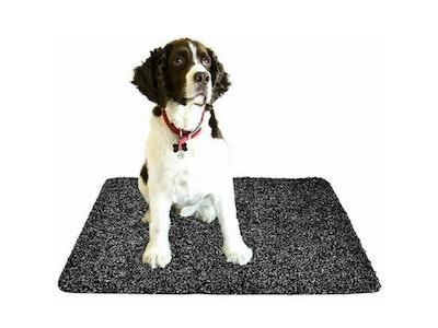 Super Absorbent Doormat Clean Step Mat Microfibre Non-Slip Absorbs Mud Water Pet