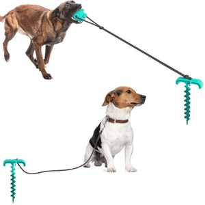 DoggyTopia Outdoor Tug Ball With Tie Out Stake