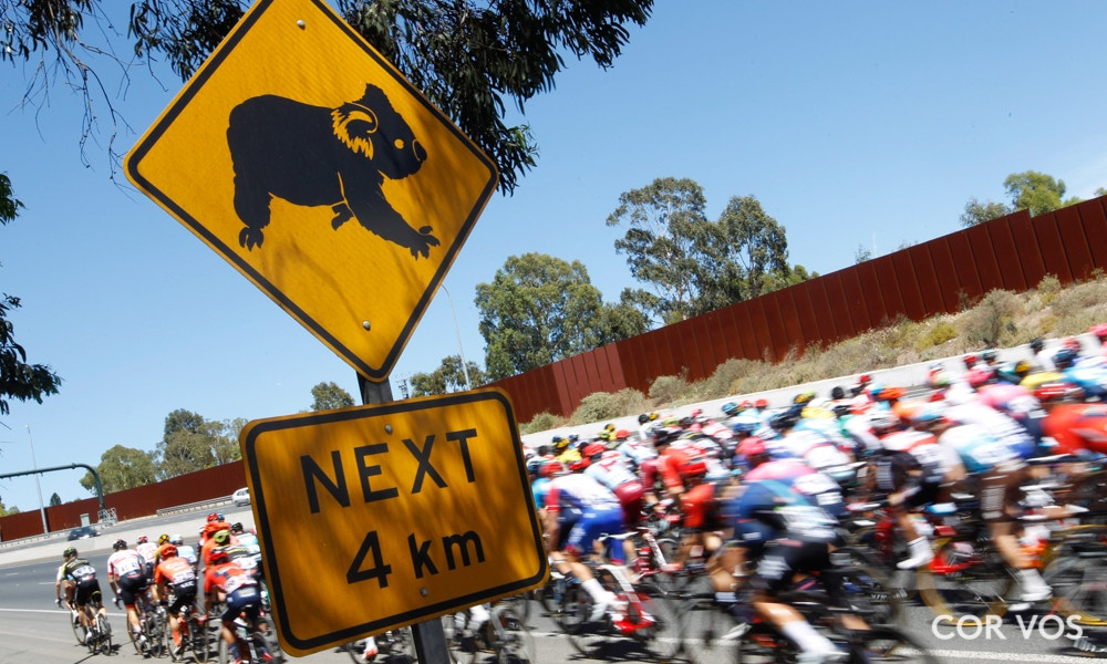 Santos Tour Down Under Stage Six Race Results