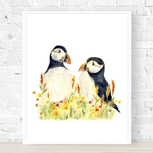 Puffin Pair - Archival Print