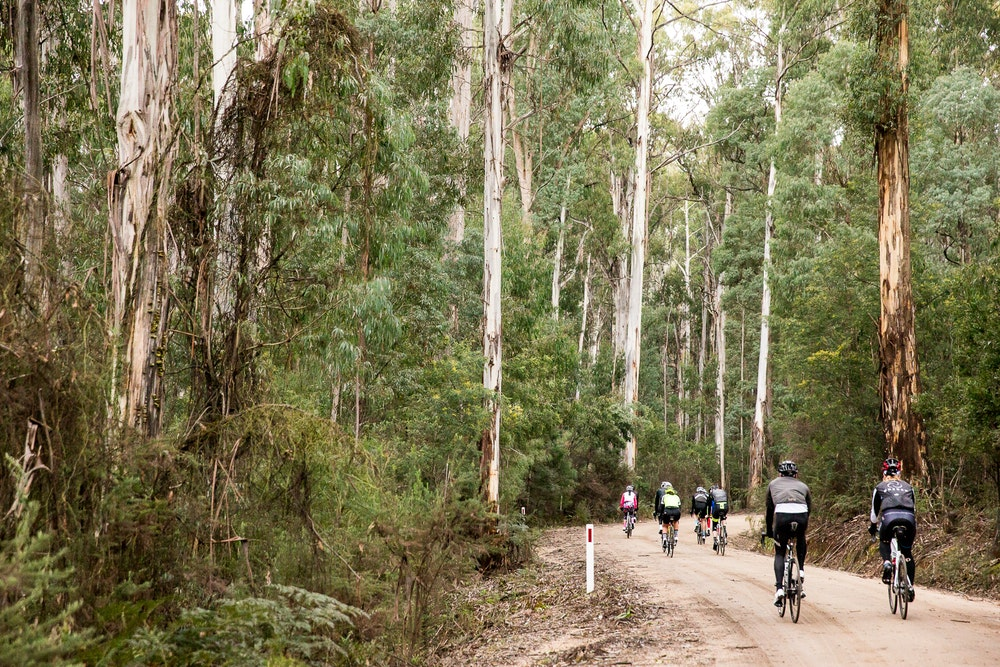 Shimano weekend king valley gravel track