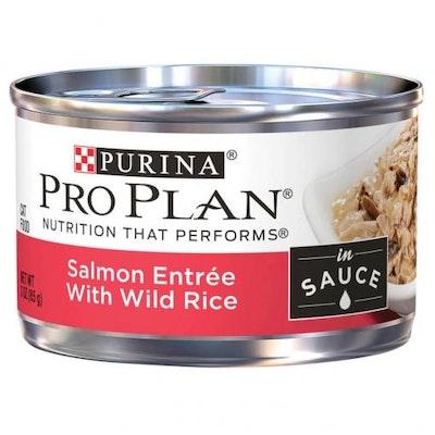 Pro Plan Adult Salmon & Rice Entree Wet Cat Food 85G